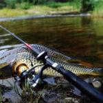 Рыбалка с алиэкспресс