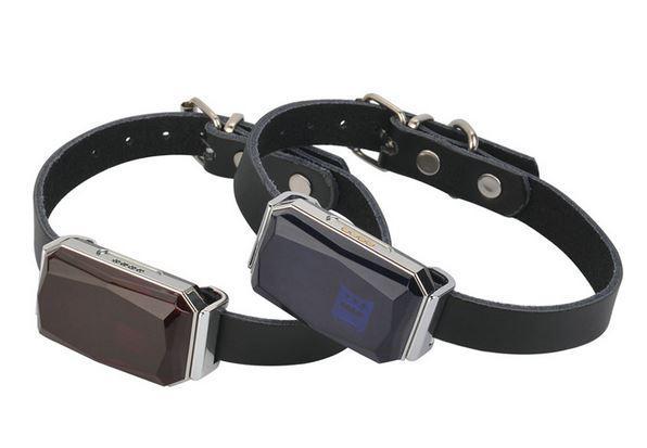 GPS ошейник для домашних животных GSM AGPS Wifi LBS