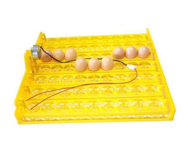 инкубатор для перепелиных и куриных яиц с Алиэкспресс