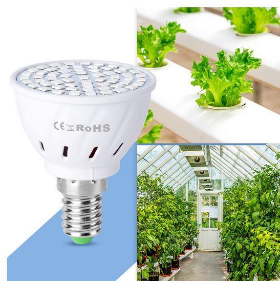 светодиодная лампа для выращивания растений