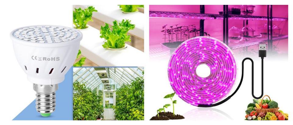 Лампа для растений на Алиэкспресс: какую выбрать